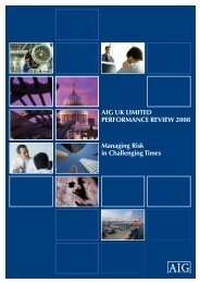 AIG UK lImIted PerformAnce revIew 2008 managing risk in ... - JLT