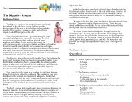 The Digestive System Questions