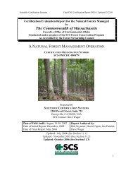 FOREST CERTIFICATION REPORT - FSC Watch