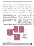 Daniels et al. 2007 - Library - Page 6