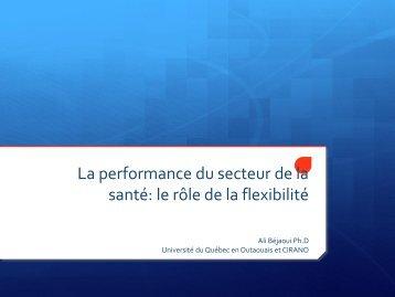 La performance du secteur de la santé: le rôle de la flexibilité