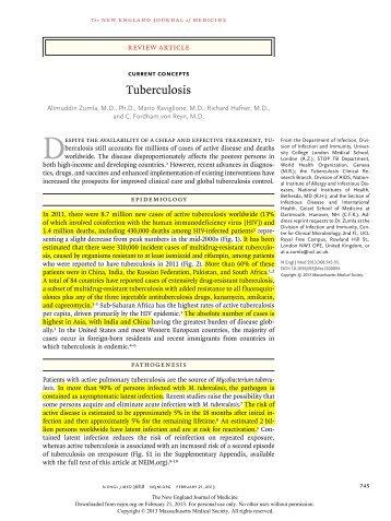 Tuberculosis 728KB