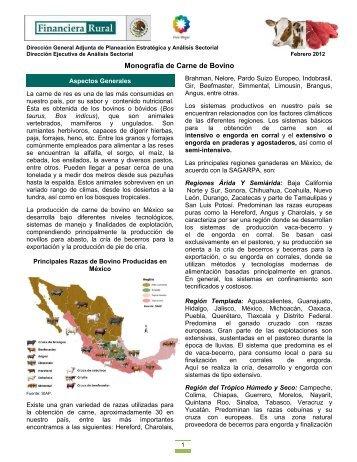 Monografía de Carne de Bovino - Financiera Rural