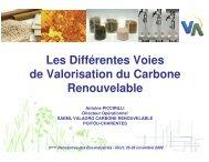 Les Différentes Voies de Valorisation du Carbone Renouvelable