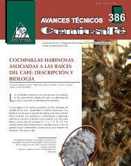 cochinillas harinosas asociadas a las raíces del café - Repositorios ...