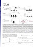 The reserve pool of synaptic vesicles acts as a buffer for proteins ... - Page 4