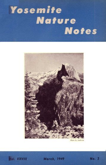 Yosemite Online