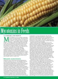 Mycotoxins in Feed
