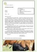 smo kvetencerven10.indd - Svaz marginálních oblastí - Page 3