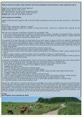 smo kvetencerven10.indd - Svaz marginálních oblastí - Page 5