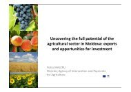 Uncovering the full potential of the agricultural sector in Moldova ...