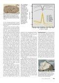 Sterne und Weltraum 1999 - Spektrum der Wissenschaft - Seite 4