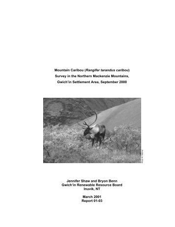 Mountain Caribou (Rangifer tarandus caribou) Survey in the ...