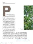 1P5grHb - Page 6