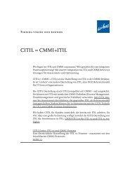 Artikel als PDF (164KB) - wibas GmbH