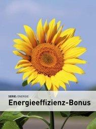 Energie-Effizienzbonus - wia