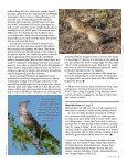 2014-04 Apr - Page 5