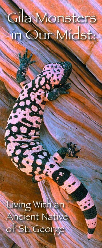 Gila Monsters in Our Midst (PDF) - Utah Division of Wildlife ...