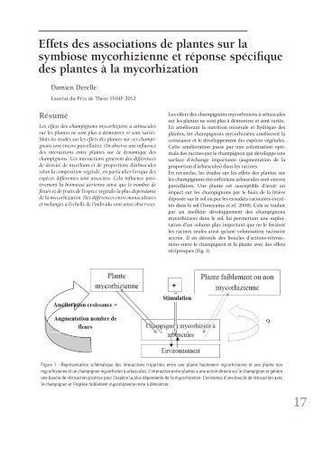 Effets des associations de plantes sur la symbiose ... - Jejardine.org