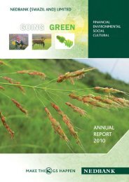 2010 Annual report - Nedbank Group Limited