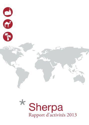 Rapport-dactivités-2013