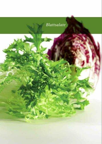 Blattsalate - frigemo
