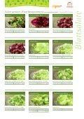 Blattsalate - frigemo - Seite 2