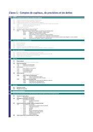 Classe 1 - Comptes de capitaux, de provisions et de dettes