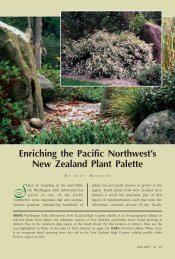 Enriching the Pacific Northwest's New Zealand Plant Palette