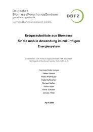 Erdgassubstitute aus Biomasse für die mobile ... - Biogaspartner