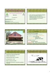 Enfermedades de.. - Departamento de Producción Animal y Pasturas