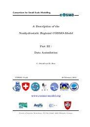 COSMO Documentation Part III: Data Assimilation