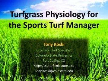 Turf Physiology - CSU Turf Program - Colorado State University