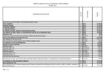 Proiect de buget pe anul 2013
