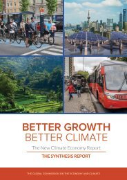 BetterGrowth-BetterClimate_NCE_Synthesis-Report_web
