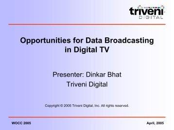 Opportunities for Data Broadcasting in Digital TV