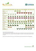 Ogni cosa a suo tempo: consuma frutta e verdura di ... - Econote.it - Page 3