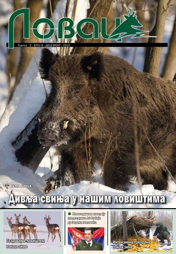 Дивља свиња у нашим ловиштима - Lovacki Savez Srbije