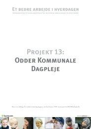 Ekstern evaluering (PDF) - BEDREarbejde.dk
