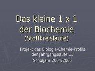 Das kleine 1 x 1 der Biochemie (Stoffkreisläufe) - PS ...