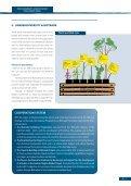 BIODIVERSITY, SOURCE OF A NEW DEVELOPMENT MODEL - Page 7
