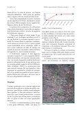 Verifica agronomica di Dacus carota L. varietà locale - Inea - Page 3