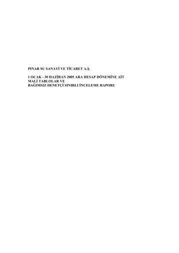 6 Aylık Finansal Tablolar ve Bağımsız Denetim Raporu - Pınar