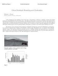 2008 Michael L Roose (Rootstock Breeding & Evaluation) - Citrus ...