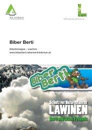 Didaktisch-methodischer Kommentar - Biber Berti
