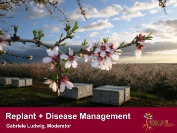 Replant + Disease Management - Almond Board of California