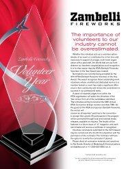Volunteer of the Year Entry Brochure - International Festivals ...