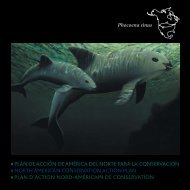Download the NACAP document in PDF format - Whale Trackers