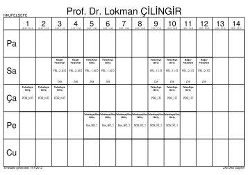 Prof. Dr. Lokman ÇİLİNGİR