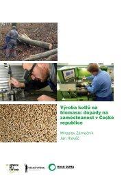 Výroba kotlů na biomasu: dopady na zaměstnanost v ... - Hnutí DUHA